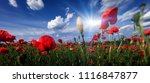 sunset over field with red... | Shutterstock . vector #1116847877