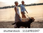Stock photo shot of a happy senior couple walking their dogs by the river 1116981047