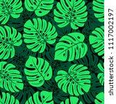 leaves of palm  monstera....   Shutterstock .eps vector #1117002197