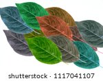 group of overlay multi colored... | Shutterstock . vector #1117041107