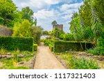 talbot botanical garden in... | Shutterstock . vector #1117321403
