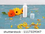 natural cosmetics and common... | Shutterstock . vector #1117329347