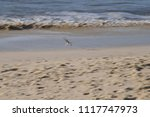 surf on the north sea coast off ... | Shutterstock . vector #1117747973