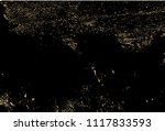 vector grunge gold texture... | Shutterstock .eps vector #1117833593