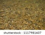 clean mountain river   stones | Shutterstock . vector #1117981607