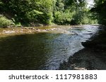 clean mountain river  stream | Shutterstock . vector #1117981883