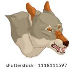 vector chromatic head of a... | Shutterstock .eps vector #1118111597