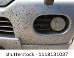 insects on the bumper car   Shutterstock . vector #1118131037