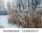 snow scenery and rime in the... | Shutterstock . vector #1118315117