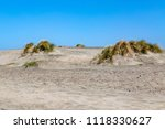 sand dunes at ocean beach  in... | Shutterstock . vector #1118330627