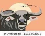 buffalo with sunset | Shutterstock .eps vector #1118603033