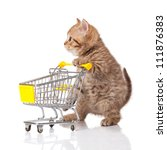 Stock photo british cat with shopping cart isolated on white kitten osolated 111876383