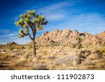 Joshua Tree National Park ...