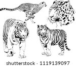 set of vector drawings on the... | Shutterstock .eps vector #1119139097