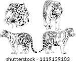 set of vector drawings on the... | Shutterstock .eps vector #1119139103
