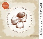 peeled macadamia nut seed and... | Shutterstock .eps vector #1119490613