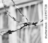 Barbed wire black and white - stock photo