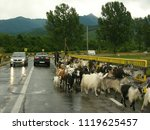 transylvania  romania   romania ...   Shutterstock . vector #1119625457