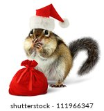 Chipmunk In Red Santa Claus Ha...