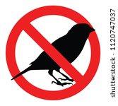 no bird sign  vector | Shutterstock .eps vector #1120747037