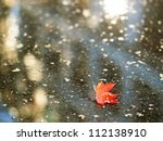 Red maple leaf fallen to a puddle - stock photo