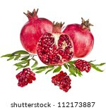 pomegranate isolated on the... | Shutterstock . vector #112173887