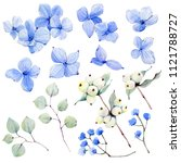 handpainted watercolor flowers... | Shutterstock . vector #1121788727