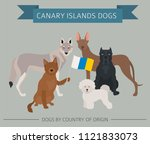 dogs by country of origin.... | Shutterstock .eps vector #1121833073