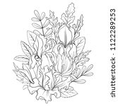 line drawing vector floral... | Shutterstock .eps vector #1122289253