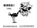 ostrich drawing vector... | Shutterstock .eps vector #1122550493