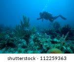 diver near corals  cuba | Shutterstock . vector #112259363