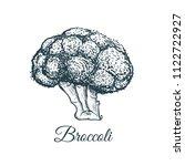 broccoli sketch drawing....   Shutterstock .eps vector #1122722927
