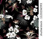vector seamless beautiful... | Shutterstock .eps vector #1123236593