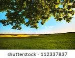 green field in springtime. | Shutterstock . vector #112337837