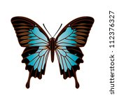2d,animal,art,artwork,backdrop,background,beautiful,beauty,biology,black,blue,botanic,bright,card,contour