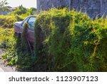 car wreck and evening light | Shutterstock . vector #1123907123