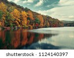 autumn colorful foliage with... | Shutterstock . vector #1124140397