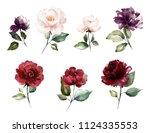 watercolor burgundy flowers.... | Shutterstock . vector #1124335553