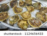 metallic tray with fresh oyster ... | Shutterstock . vector #1124656433