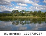 beautiful lake and reflection... | Shutterstock . vector #1124739287