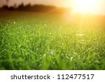 green grass | Shutterstock . vector #112477517