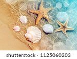starfish and seashell on the... | Shutterstock . vector #1125060203