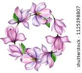 wildflower magnolia flower... | Shutterstock . vector #1125398807