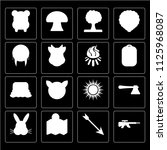set of 16 icons such as rifle ...