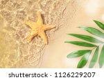 starfish on the summer beach in ... | Shutterstock . vector #1126229207