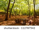 Natural Park in Autumn with with trees and deciduous leaves - stock photo