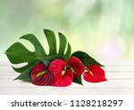Bouquet Of Tropical Red Flower...