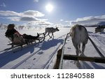 Reindeer sledding ecotourism tour, Sweden. - stock photo