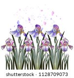 a row of delicate irises in... | Shutterstock .eps vector #1128709073
