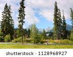 summertime landscape  girl... | Shutterstock . vector #1128968927